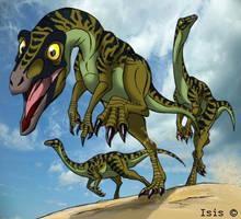dromiceiomimus by IsisMasshiro