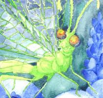 Green Lacewing by AjaxTelamoneis