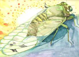Cicada by AjaxTelamoneis