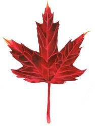 Leaf #28 (Maple, the fifth) by AjaxTelamoneis