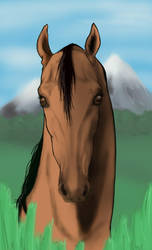 Horse head by imargarita