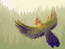 Forest Bird by Alecat