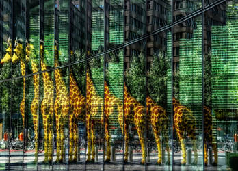 Reflection - Giraffe from LEGO by pingallery