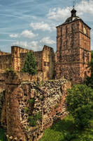 Castle Ruins in Heidelberg I by pingallery