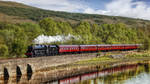 Scotland - West Highland Line - The Jacobite by pingallery