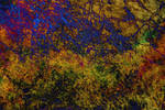 Texture - Rainbow Crackle by ChimeraDragonfang