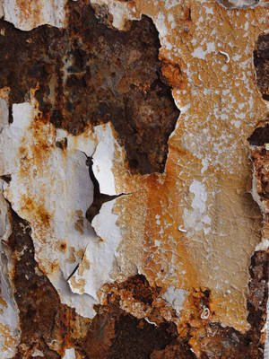 Texture: Flaking Paint V by ChimeraDragonfang