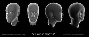 3D Head model by artislight