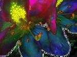 Rhododendron Flower 1 by artislight