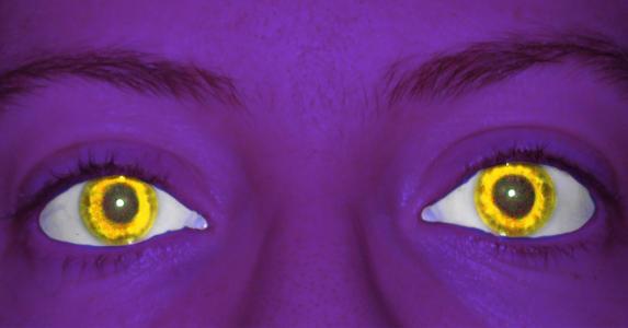Trickster91's Profile Picture