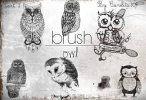 Previa Owl Part 2 By Canelita309 by SriitaDeWatt