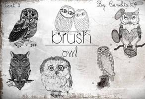 Previa Owl Part 3 By Canelita309 by SriitaDeWatt