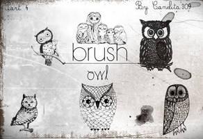 Previa Owl Part 4 By Canelita309 by SriitaDeWatt