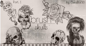 Skull Brushes Part 1 By Canelita309 by SriitaDeWatt