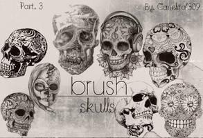 Skull Brushes Part 3 By Canelita309 by SriitaDeWatt