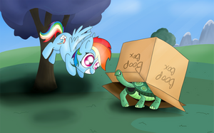 Boop Box by MachStyle