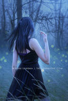 Chasing Fireflies by TheDarkRayne