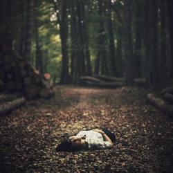 J'aime couper du bois, la nuit by AlexandraSophie