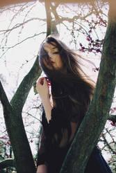 Vol au vent by AlexandraSophie