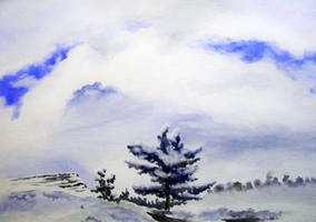 Winter Study by Christa-S-Nelson