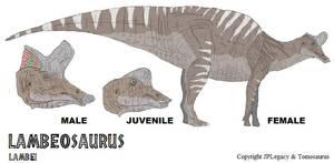 LtL Lambeosaurus by Tomozaurus