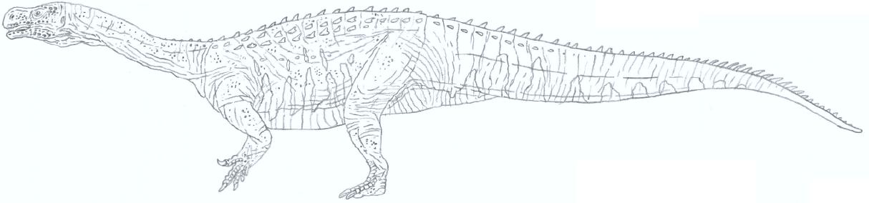 Aardonyx line-art by Tomozaurus