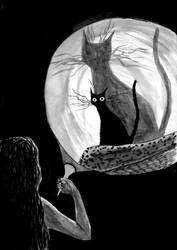 Black cat in the dark room by werepine