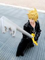 Kingdom Hearts 358/2 : Roxas Organization XIII by Smexy-Boy