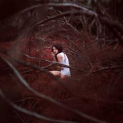 Hiding Place by Sturmideenkind