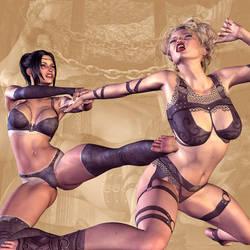 Catfight n.1 by Pierrett2