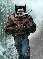 wolverine canada by laseraw