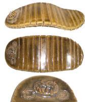 Odontogriphus by aberrantceramics