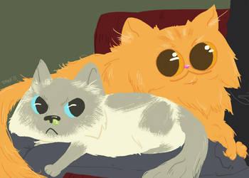 Fluffeh Cats by DeesDilemma