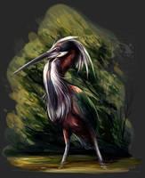 Agami Heron by ElementalSpirits