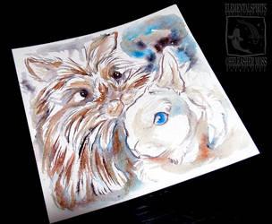 Blue Eyes Fluffy Rabbit by ElementalSpirits