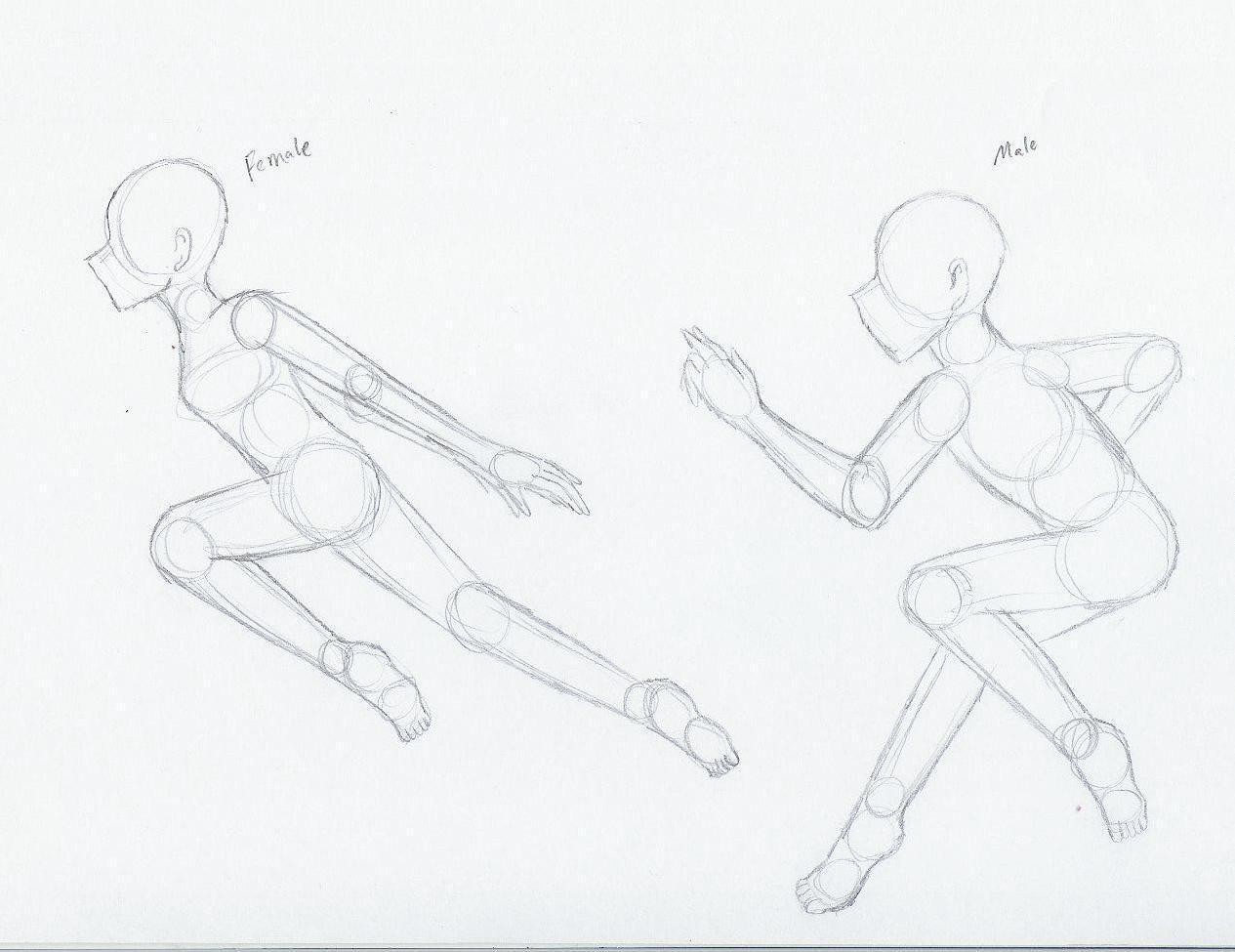 ninja body frames m and f by Zalia13 on DeviantArt