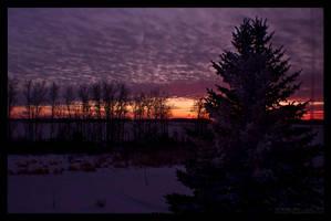 Winter Skies II by ColeJA