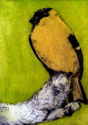 Goldfinch by idlewild202