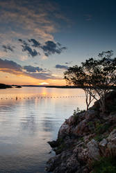 The Tree by the Lake by SeanAustinFotography