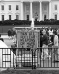 white house by j3ssko