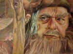 Radagast The Brown by SchizophrenicUnicorn