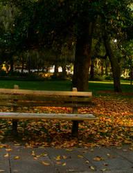 forsyth park by amberhall