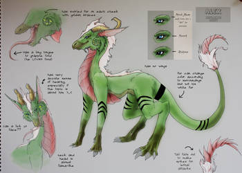 Alex Ref Sheet Completed by Yuroboros