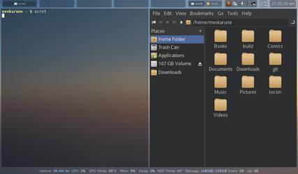2014 - Arch Linux, Herbslutfwm Desktop by Meskarune
