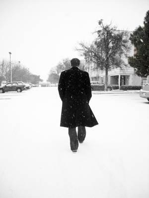 Snow's Embrace by Masane