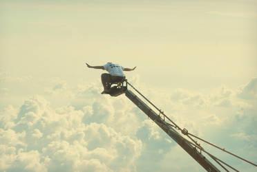 Tokwa Fly High by AdREPUBLIKA