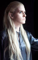 Prince of Elves by starleighcos