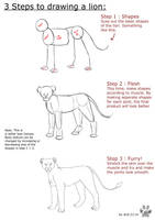 Lion Anatomy tutorial by it-ktdf