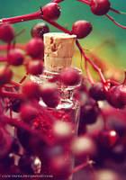 red magic by cloe-may