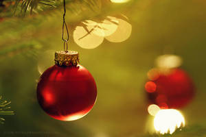 week51: Merry Christmas by cloe-may